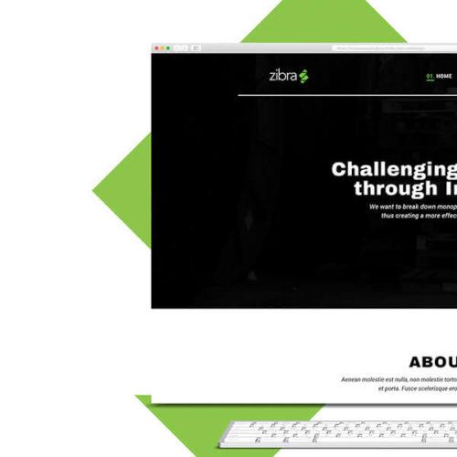 Webdesign til Zibra